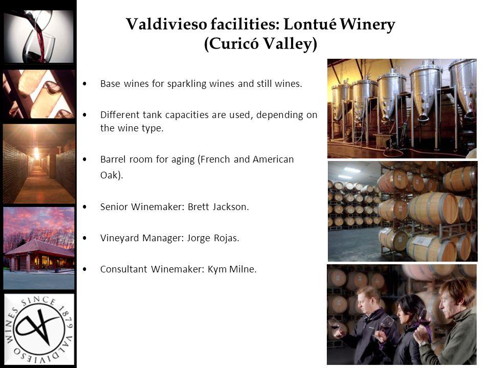 Sagrada Familia (Curicó Valley): La Primavera Vineyard Valdivieso´s Vineyards (Curicó Valley)