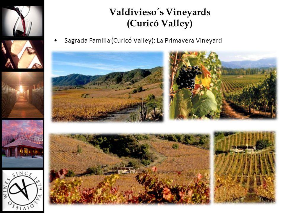 Viña Valdivieso - Sparkling Portfolio -