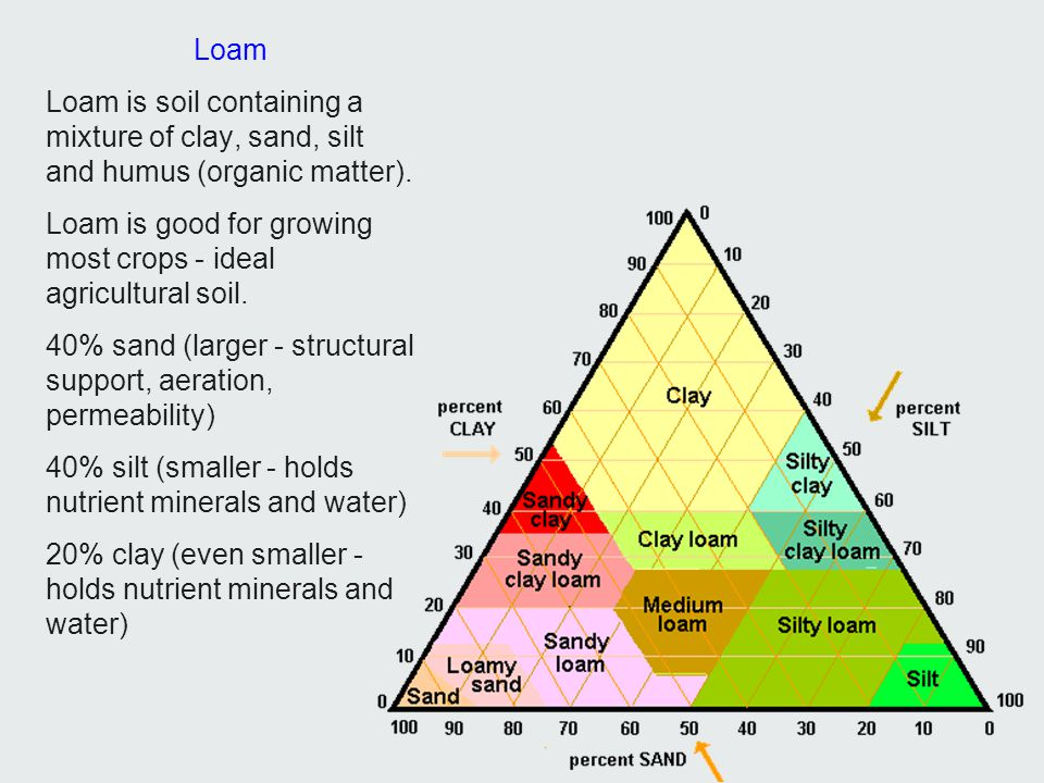 Loam Loam is soil containing a mixture of clay, sand, silt and humus (organic matter). Loam is good for growing most crops - ideal agricultural soil.