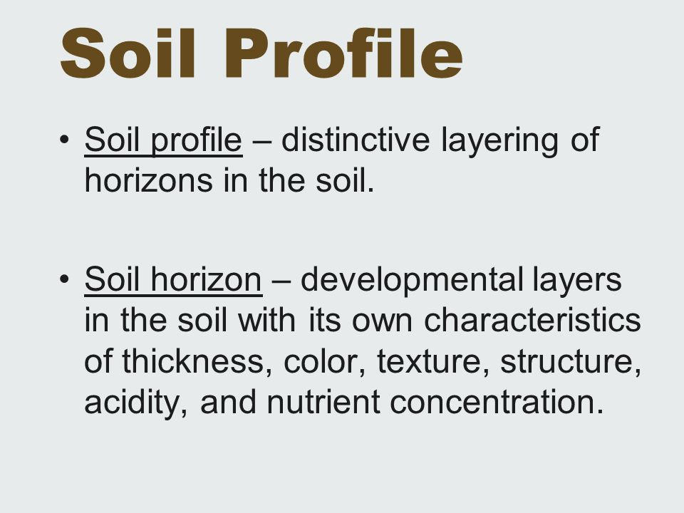 Soil Profile Soil profile – distinctive layering of horizons in the soil. Soil horizon – developmental layers in the soil with its own characteristics