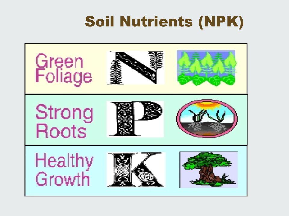 Soil Nutrients (NPK)