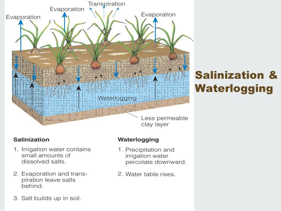 Salinization & Waterlogging