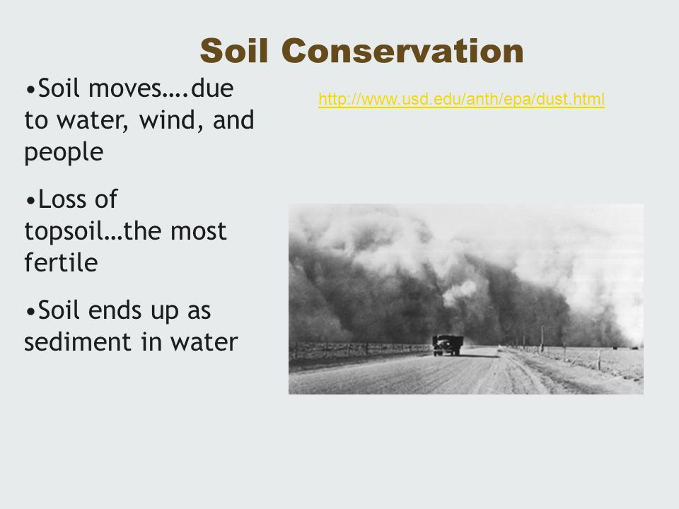 Soil Conservation Soil moves….due to water, wind, and people Loss of topsoil…the most fertile Soil ends up as sediment in water http://www.usd.edu/ant