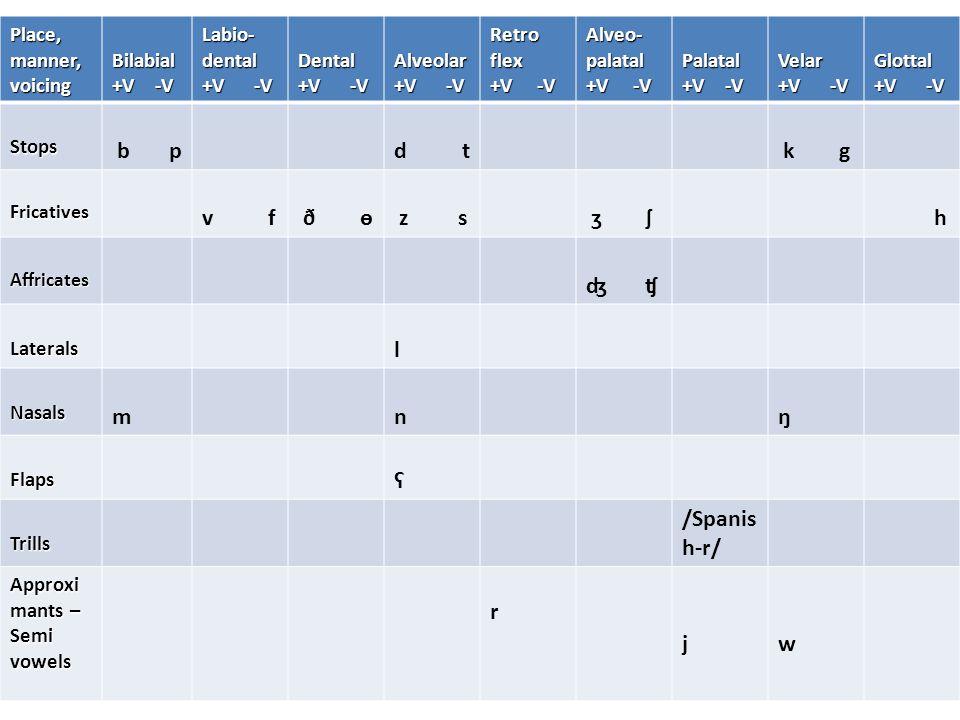 Place, manner, voicing Bilabial +V -V Labio- dental +V -V Dental Alveolar Retro flex +V -V Alveo- palatal +V -V Palatal Velar Glottal Stops b pd t k g Fricatives v f ð ө z s ʒ ʃ h Affricates ʤ ʧ Laterals l Nasals mnŋ Flaps ʕ Trills /Spanis h-r/ Approxi mants – Semi vowels r jw