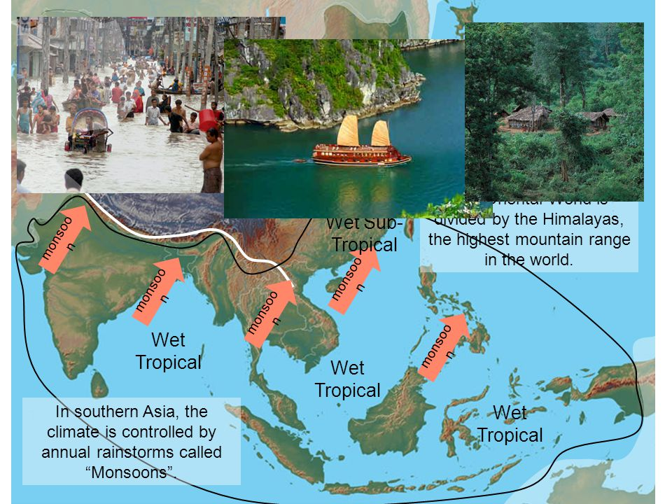 The Oriental World is divided by the Himalayas, the highest mountain range in the world. Wet Tropical monsoo n Wet Sub- Tropical Wet Tropical In south