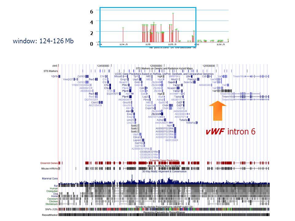 0 4 6 2 vWF intron 6 window: 124-126 Mb