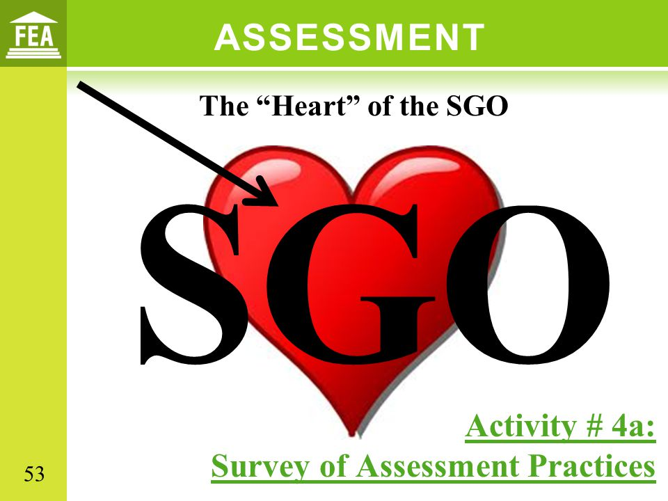 ASSESSMENT SGO Activity # 4a: Survey of Assessment Practices The Heart of the SGO 53