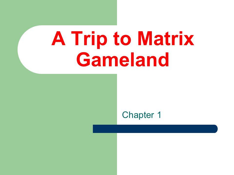A Trip to Matrix Gameland Chapter 1