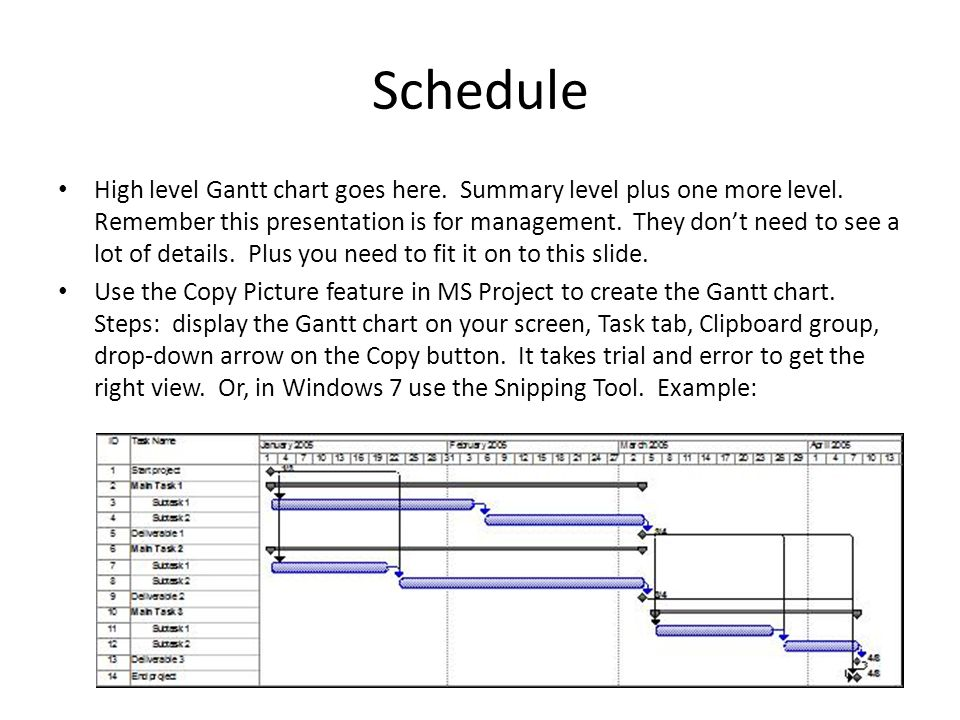 Schedule High level Gantt chart goes here. Summary level plus one more level.