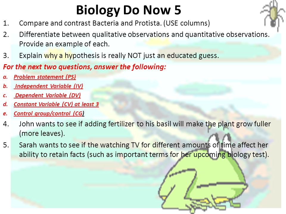 Biology Do Now 5 1.Compare and contrast Bacteria and Protista.