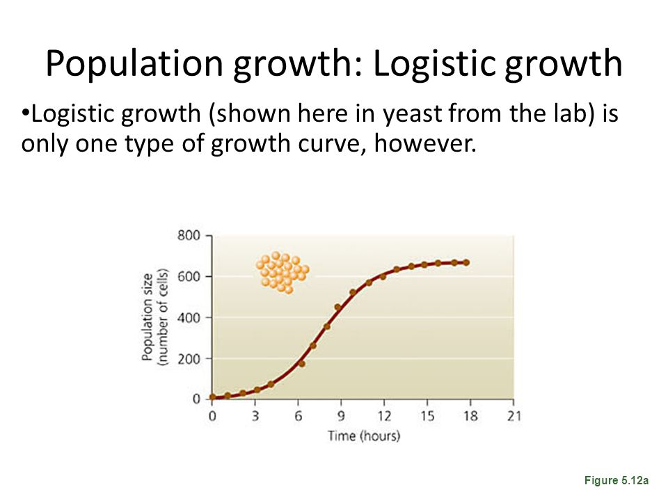 Population growth: Logistic growth Logistic growth (shown here in yeast from the lab) is only one type of growth curve, however. Figure 5.12a