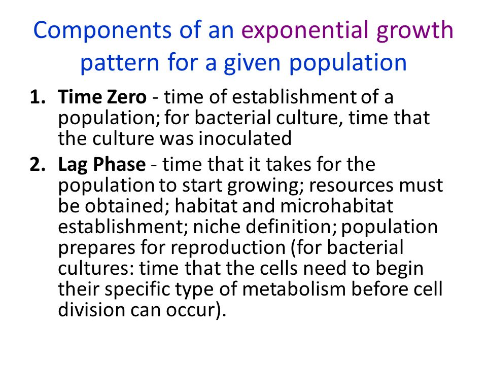 Components of an exponential growth pattern for a given population 1.Time Zero - time of establishment of a population; for bacterial culture, time th