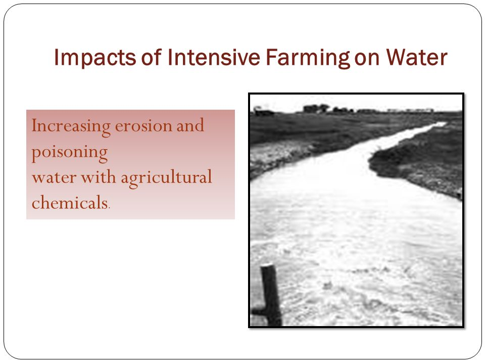 Impacts of Intensive Farming on Water Increasing erosion and poisoning water with agricultural chemicals.