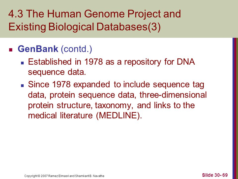 Copyright © 2007 Ramez Elmasri and Shamkant B. Navathe Slide 30- 69 4.3 The Human Genome Project and Existing Biological Databases(3) GenBank (contd.)