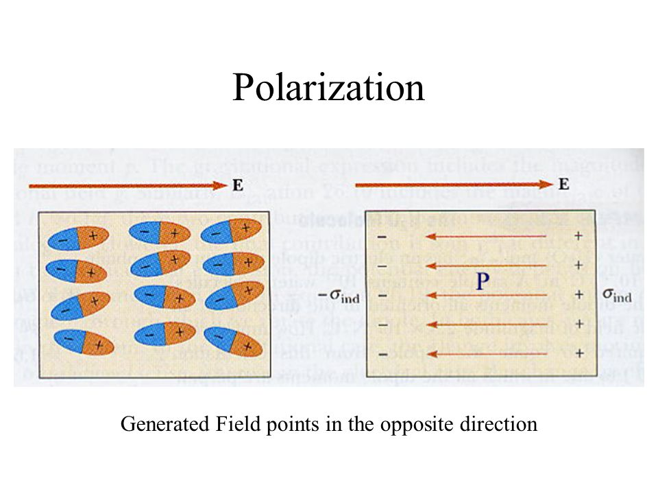 Polarization Generated Field points in the opposite direction