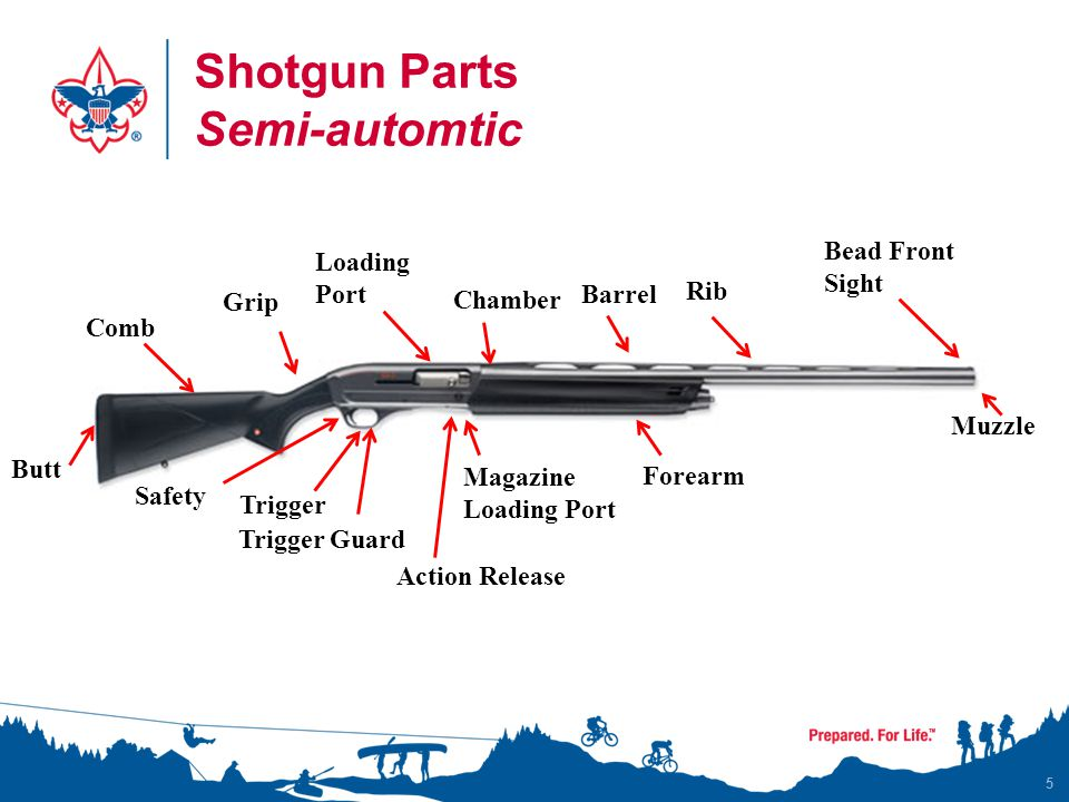 Shotgun Parts Semi-automtic 5 Butt Comb Grip Loading Port Chamber Barrel Rib Muzzle Bead Front Sight Forearm Safety Trigger Guard Trigger Magazine Loa