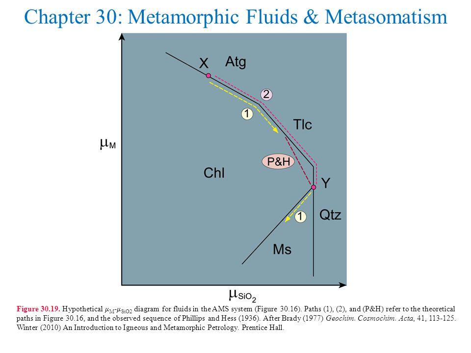 Chapter 30: Metamorphic Fluids & Metasomatism Figure 30.19.