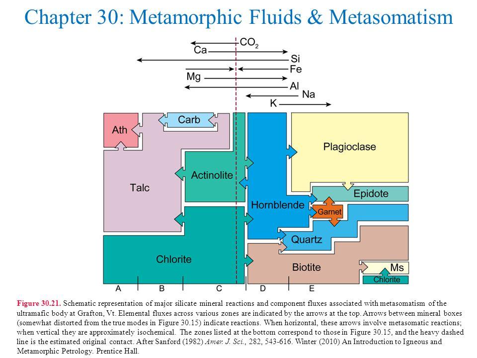Chapter 30: Metamorphic Fluids & Metasomatism Figure 30.21.