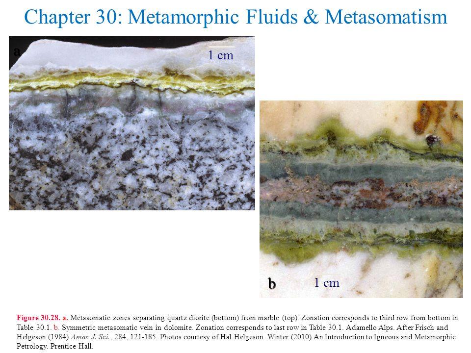 Chapter 30: Metamorphic Fluids & Metasomatism Figure 30.28.