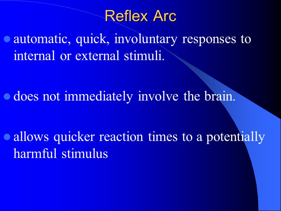 Reflex Arc automatic, quick, involuntary responses to internal or external stimuli. does not immediately involve the brain. allows quicker reaction ti