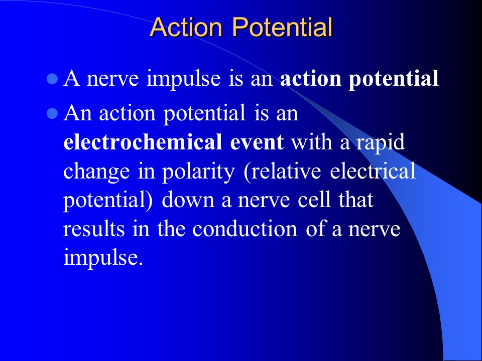 Action Potential A nerve impulse is an action potential An action potential is an electrochemical event with a rapid change in polarity (relative elec