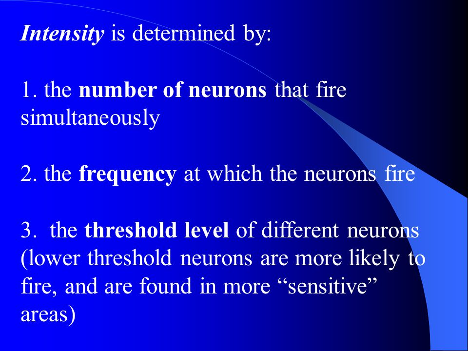 Intensity is determined by: 1. the number of neurons that fire simultaneously 2. the frequency at which the neurons fire 3. the threshold level of dif