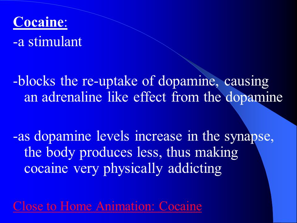 Cocaine: -a stimulant -blocks the re-uptake of dopamine, causing an adrenaline like effect from the dopamine -as dopamine levels increase in the synap