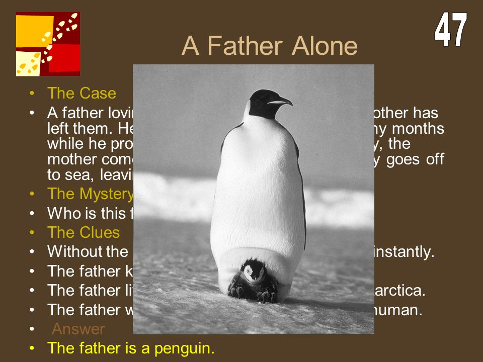 A Father Alone The Case A father lovingly cares for his baby after it's mother has left them. He gives up his own comfort for many months while he pro