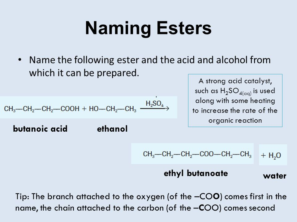 Naming Esters Name the following ester and the acid and alcohol from which it can be prepared. ethyl butanoate ethanolbutanoic acid water Tip: The bra