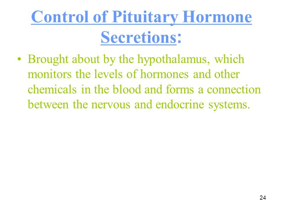 24 Control of Pituitary Hormone Secretions : Brought about by the hypothalamus, which monitors the levels of hormones and other chemicals in the blood
