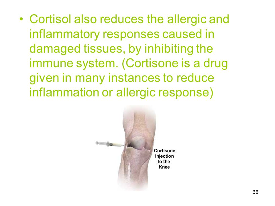 38 Cortisol also reduces the allergic and inflammatory responses caused in damaged tissues, by inhibiting the immune system. (Cortisone is a drug give
