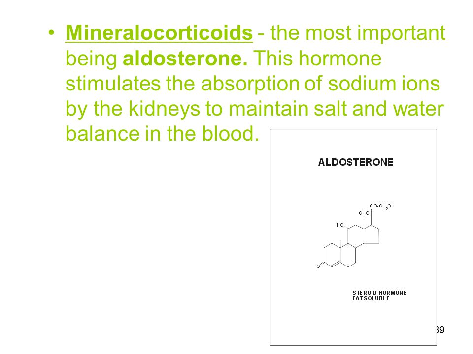 39 Mineralocorticoids - the most important being aldosterone. This hormone stimulates the absorption of sodium ions by the kidneys to maintain salt an