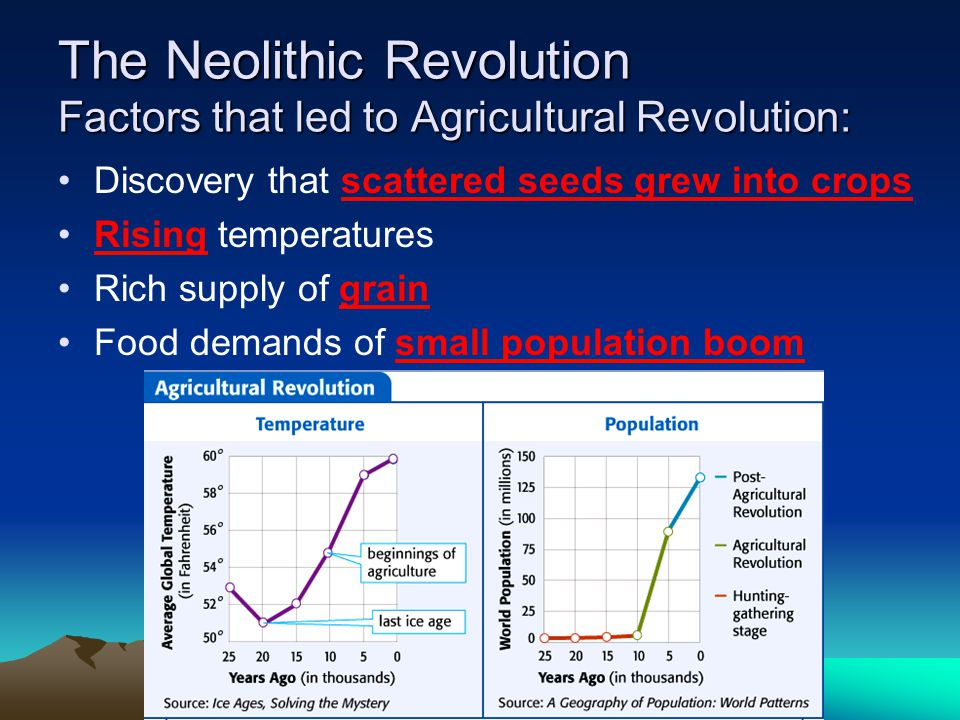 The Neolithic Revolution Factors that led to Agricultural Revolution: Discovery that scattered seeds grew into crops Rising temperatures Rich supply of grain Food demands of small population boom