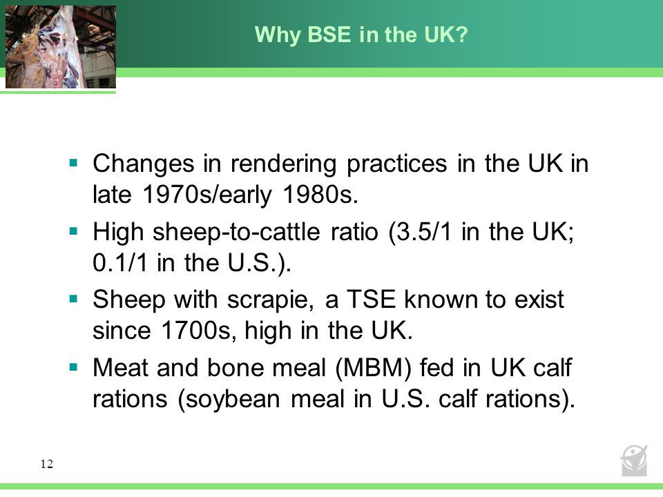 Why BSE in the UK. Changes in rendering practices in the UK in late 1970s/early 1980s.