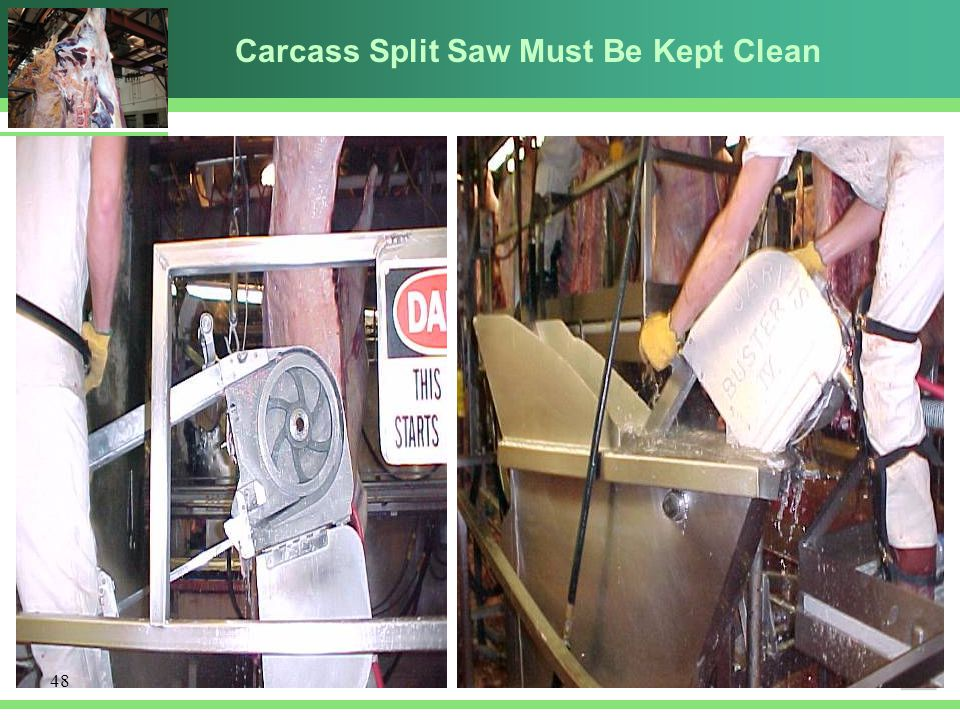Carcass Split Saw Must Be Kept Clean 48