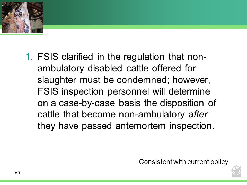 1.FSIS clarified in the regulation that non- ambulatory disabled cattle offered for slaughter must be condemned; however, FSIS inspection personnel will determine on a case-by-case basis the disposition of cattle that become non-ambulatory after they have passed antemortem inspection.