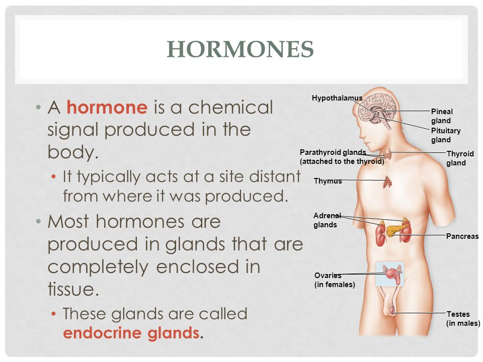 HORMONES A hormone is a chemical signal produced in the body. It typically acts at a site distant from where it was produced. Most hormones are produc