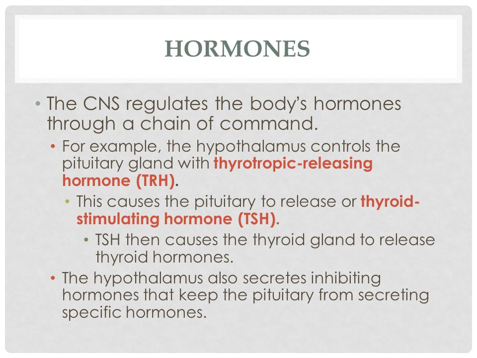 HORMONES The CNS regulates the body's hormones through a chain of command. For example, the hypothalamus controls the pituitary gland with thyrotropic