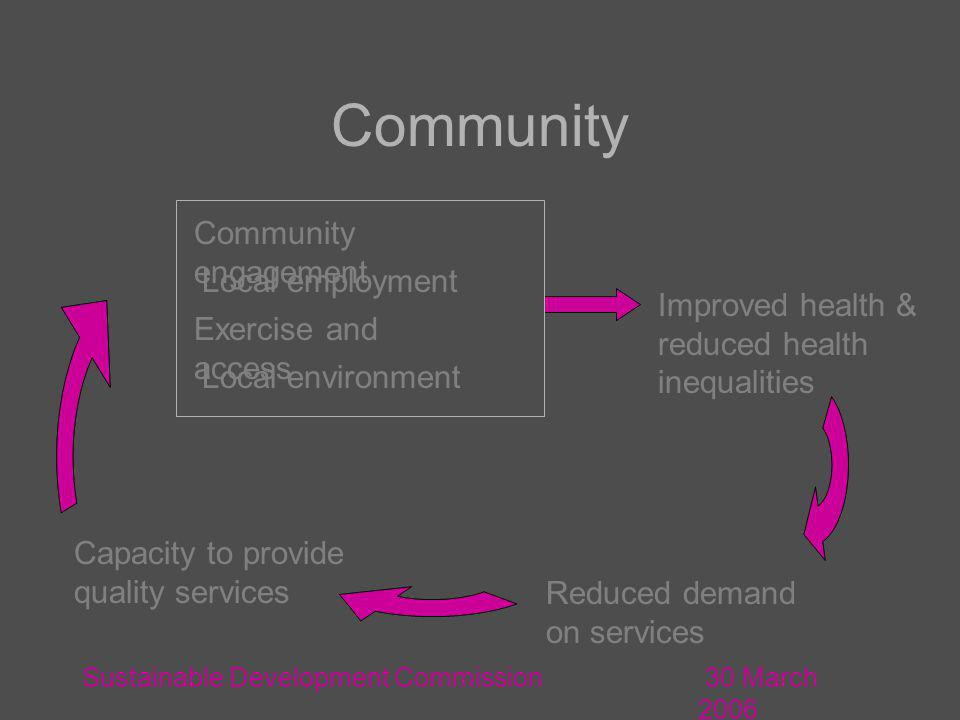 30 March 2006 Sustainable Development Commission Local environment Capacity to provide quality services Local employment Community engagement Community Reduced demand on services Exercise and access Improved health & reduced health inequalities