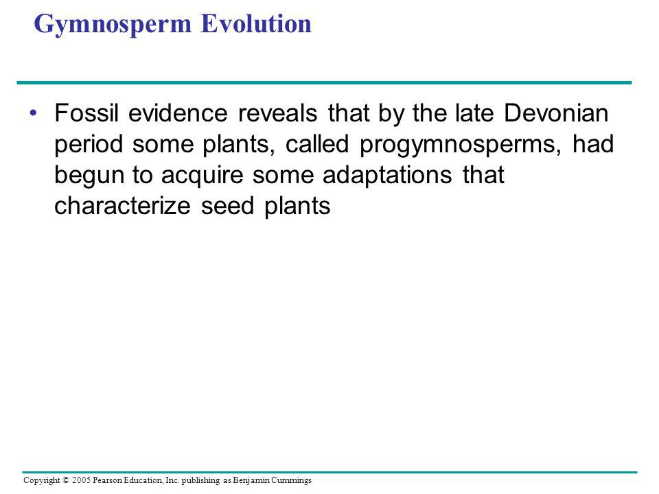 Copyright © 2005 Pearson Education, Inc. publishing as Benjamin Cummings Gymnosperm Evolution Fossil evidence reveals that by the late Devonian period
