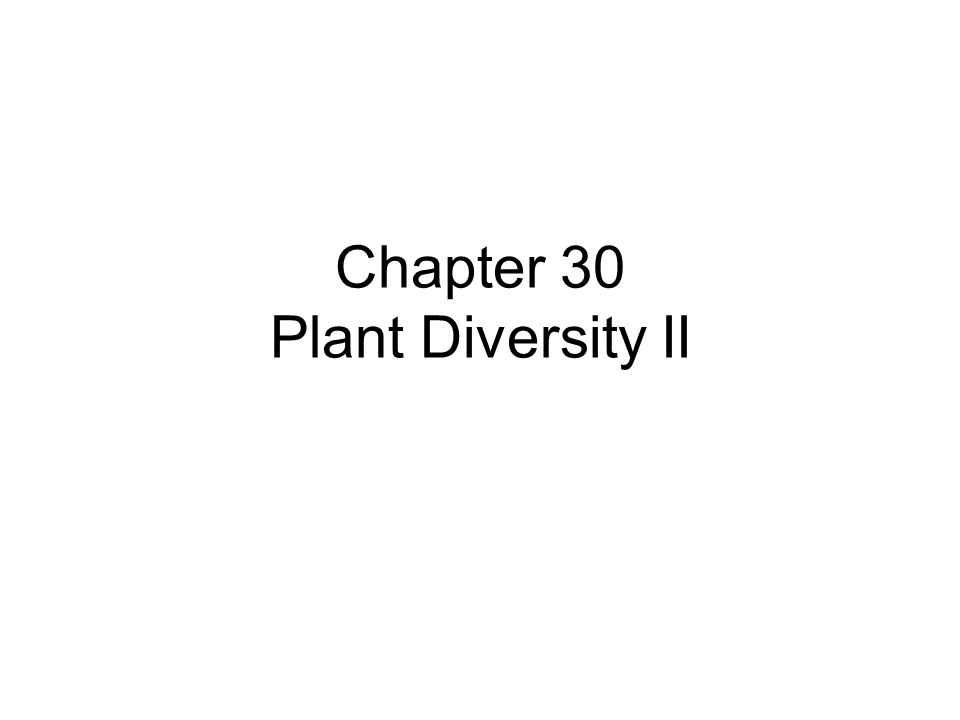Chapter 30 Plant Diversity II