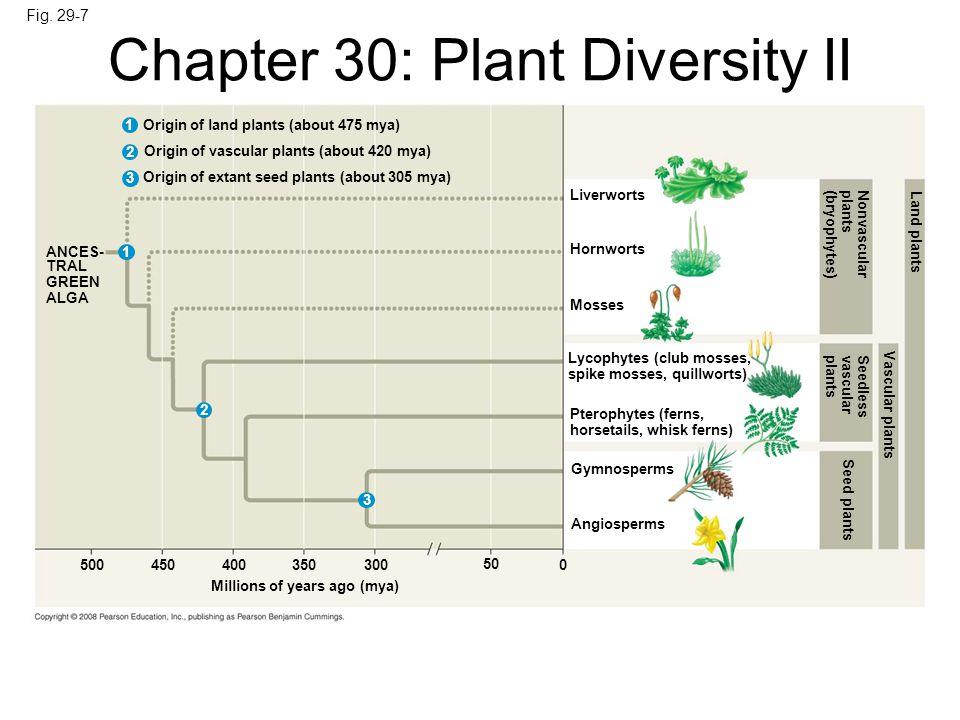 Fig. 29-7 Origin of land plants (about 475 mya) 1 2 3 1 2 3 Origin of vascular plants (about 420 mya) Origin of extant seed plants (about 305 mya) ANC