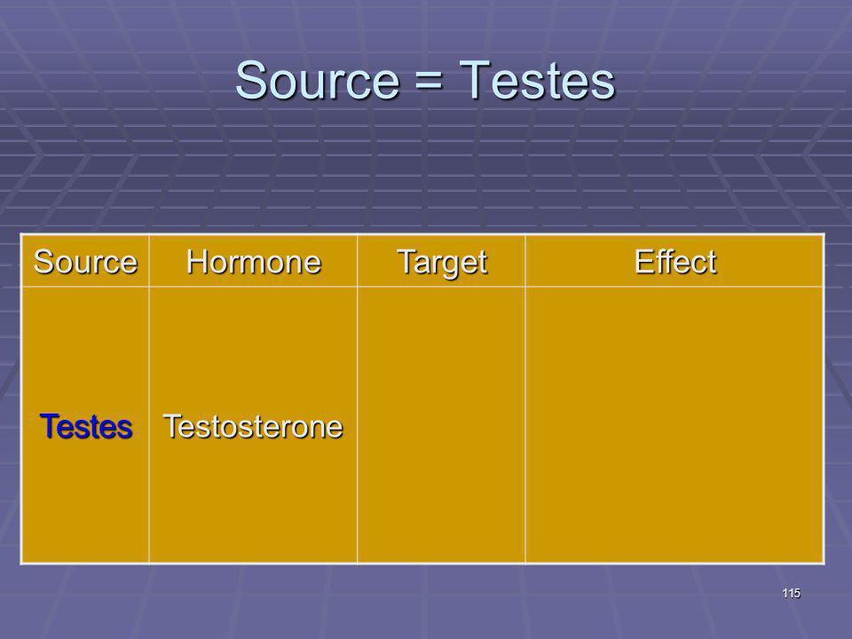 115 Source = Testes SourceHormoneTargetEffect TestesTestosterone
