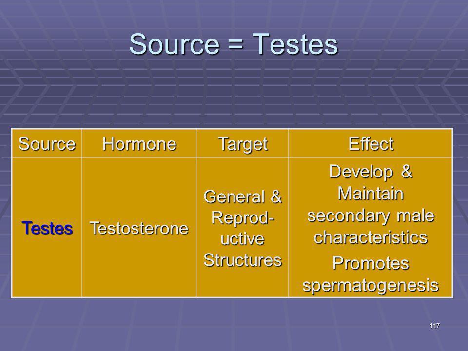 117 Source = Testes SourceHormoneTargetEffect TestesTestosterone General & Reprod- uctive Structures Develop & Maintain secondary male characteristics Promotes spermatogenesis