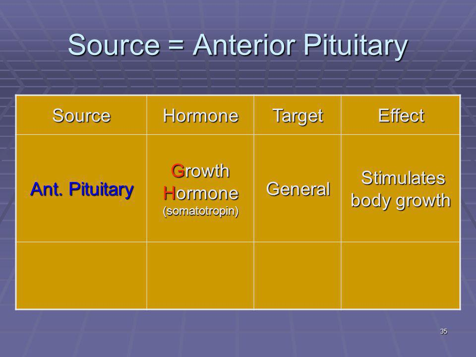 35 Source = Anterior Pituitary SourceHormoneTargetEffect Ant. Pituitary Growth Hormone (somatotropin) General Stimulates body growth Stimulates body g