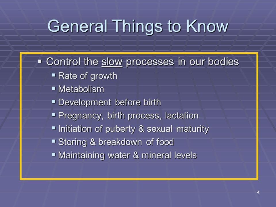 4 General Things to Know  Control the slow processes in our bodies  Rate of growth  Metabolism  Development before birth  Pregnancy, birth process, lactation  Initiation of puberty & sexual maturity  Storing & breakdown of food  Maintaining water & mineral levels