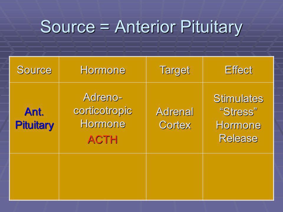 "43 Source = Anterior Pituitary SourceHormoneTargetEffect Ant. Pituitary Adreno- corticotropic Hormone ACTH Adrenal Cortex Stimulates ""Stress"" Hormone"