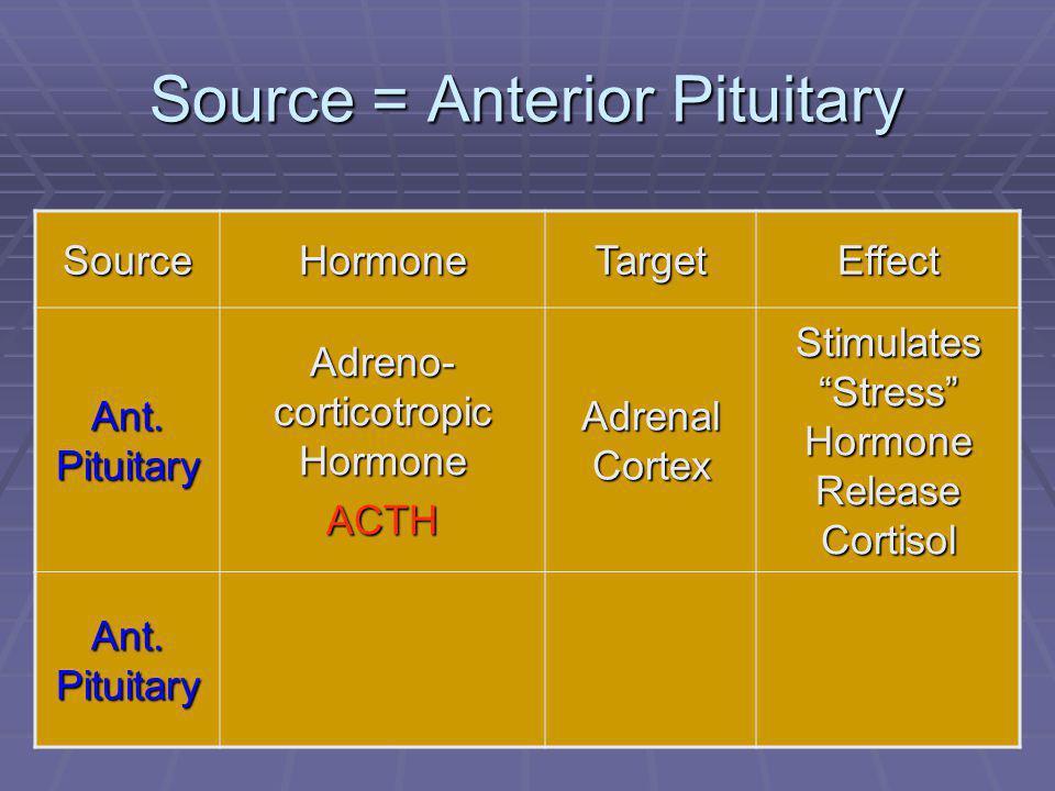 "44 Source = Anterior Pituitary SourceHormoneTargetEffect Ant. Pituitary Adreno- corticotropic Hormone ACTH Adrenal Cortex Stimulates ""Stress"" Hormone"