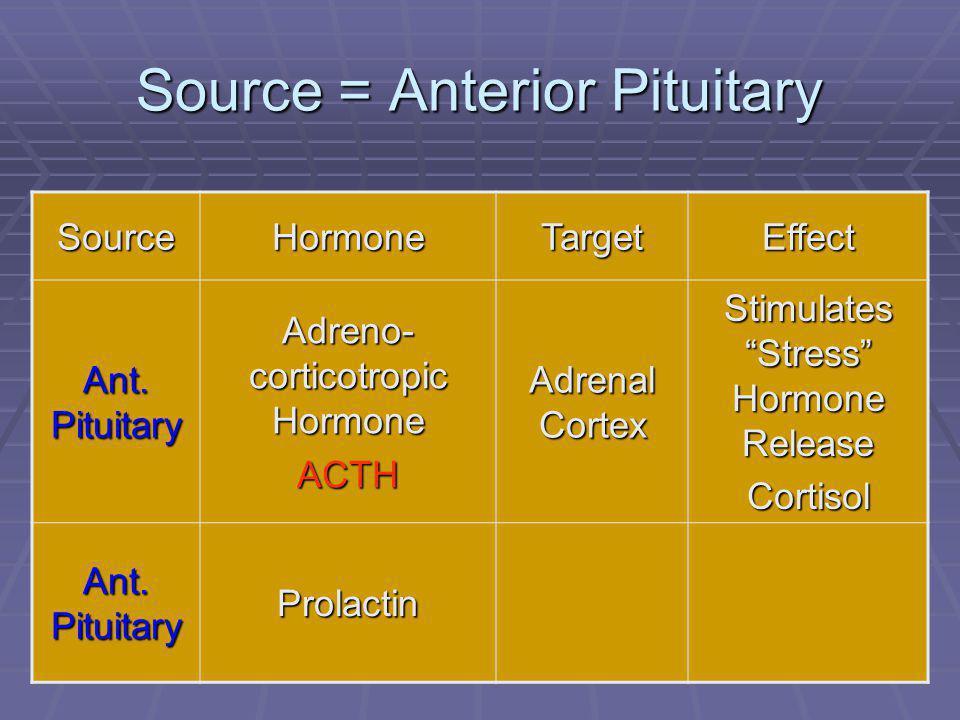 "45 Source = Anterior Pituitary SourceHormoneTargetEffect Ant. Pituitary Adreno- corticotropic Hormone ACTH Adrenal Cortex Stimulates ""Stress"" Hormone"
