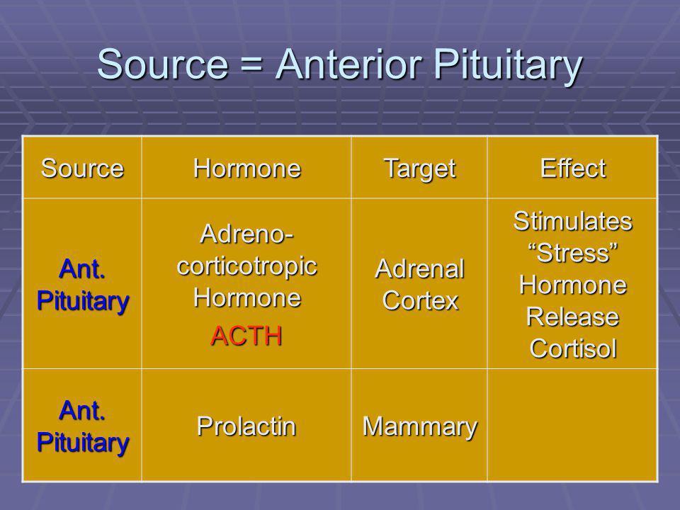 "46 Source = Anterior Pituitary SourceHormoneTargetEffect Ant. Pituitary Adreno- corticotropic Hormone ACTH Adrenal Cortex Stimulates ""Stress"" Hormone"
